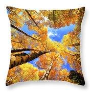 Colorado Autumn Sky Throw Pillow