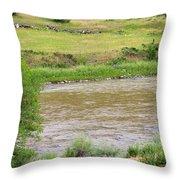 Colorado Country Throw Pillow