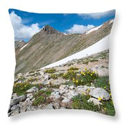 Colorado Elkhead Pass Throw Pillow