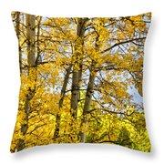 Colorado Fall Aspens 2 Throw Pillow