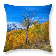 Colorado Fall Foliage Back Country View Throw Pillow