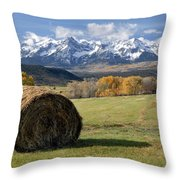 Colorado Haybale Throw Pillow