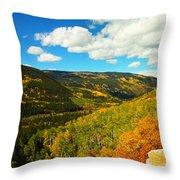 Colorado In Autumn Throw Pillow