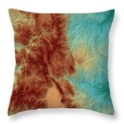 Colorado Map Art Throw Pillow