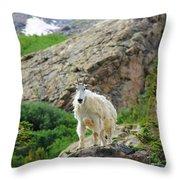 Colorado Mountain Goat Throw Pillow