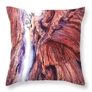 Colorado Mountains Garden Of The Gods Canyon Throw Pillow