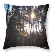 Colorado Pines Throw Pillow by Garren Zanker