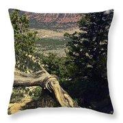 Colorado Plateau Throw Pillow