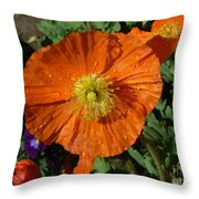 Colorado Poppy Throw Pillow