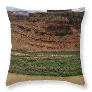 Colorado River Gooseneck Throw Pillow