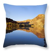 Colorado River Reflection Throw Pillow