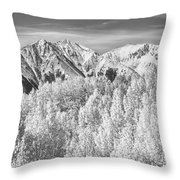 Colorado Rocky Mountain Autumn Beauty Bw Throw Pillow