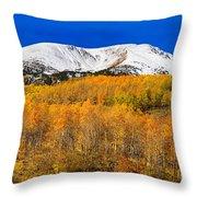 Colorado Rocky Mountain Independence Pass Autumn Pano 2 Throw Pillow