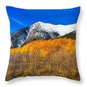 Colorado Rocky Mountain Independence Pass Autumn Panorama Throw Pillow