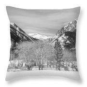 Colorado Rocky Mountain Winter Horseshoe Park Bw Throw Pillow