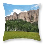 Colorado Side Of The Four Corners Area Throw Pillow