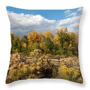 Colorado Urban Autumn Landscape Throw Pillow