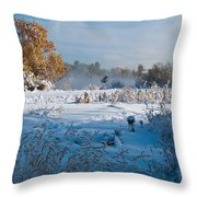 Colorado Waning Autumn And Approaching Winter Throw Pillow by Cascade Colors