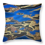Colorado Water Throw Pillow