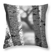 Colorado White Birch Trees In Black And White Throw Pillow