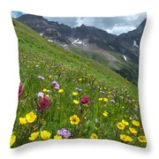 Colorado Wildflowers And Mountains Throw Pillow by Cascade Colors