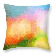 Colorama Throw Pillow