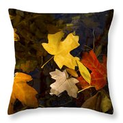 Colored Floaters Throw Pillow