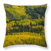 Colored Hillside Throw Pillow
