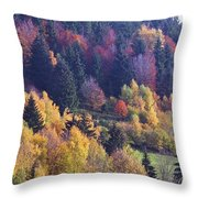 Colored Landscape Throw Pillow