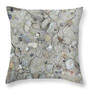 Ground Rocks Throw Pillow