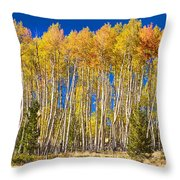 Colorful Aspen Panorama Throw Pillow