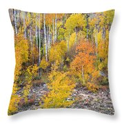 Colorful Autumn Forest In The Canyon Of Cottonwood Pass Throw Pillow