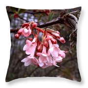 Colorful Blooming Throw Pillow
