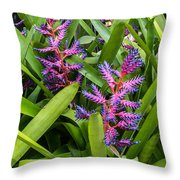 Colorful Bromeliad Throw Pillow