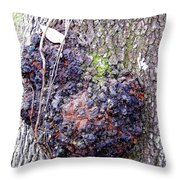 Colorful Wood Burl Throw Pillow