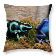 Colorful But Deadly Poison Dart Frogs Throw Pillow