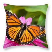 Orange Viceroy Butterfly Throw Pillow