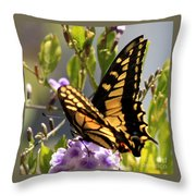 Colorful Butterfly Square Throw Pillow
