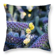 Colorful Cactus Red Purple Green Yellow Plant Fine Art Photography Print  Throw Pillow