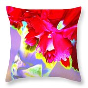 Colorful Carnation Throw Pillow