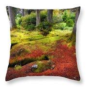 Colorful Carpet Of Moss In Benmore Botanical Garden. Scotland Throw Pillow