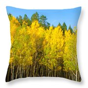 Colorful Colorado 2 Throw Pillow