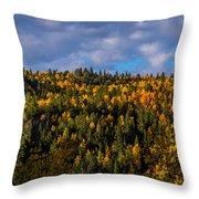Colorful Colorado 2014 Throw Pillow