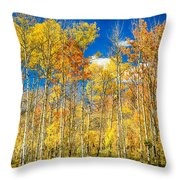 Colorful Colorado Autumn Aspen Trees Throw Pillow