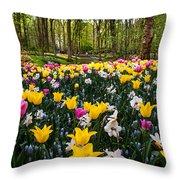 Colorful Corner Of The Keukenhof Garden 1. Tulips Display. Netherlands Throw Pillow