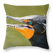 Colorful Double-crested Cormorant Throw Pillow