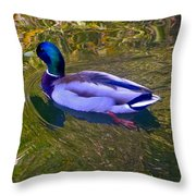 Colorful Duck Throw Pillow