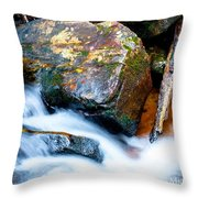 Colorful Energy Throw Pillow