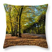 Colorful Fall Autumn Park Throw Pillow