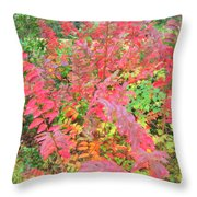 Colorful Fall Leaves Autumn Crepe Myrtle Throw Pillow